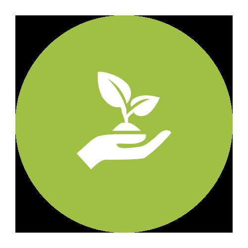 Axe 5 : Environnement et efficience des ressources